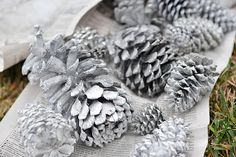 Spray painted white and glitter pine cones