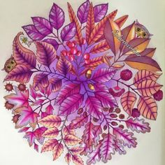Johanna Basford | Picture by Chris Cheng | Colouring Gallery