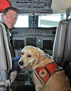 Coast Guard Dog