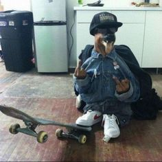 Woof Woof Mothaf*cka In This Picture: Photo of dog dressed as thug