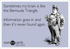 Sometimes my brain is like the Bermuda Triangle. Information goes in and then it's never found again.