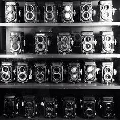 I really love these cameras, can I please have one?