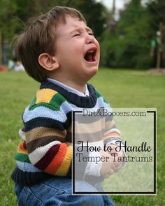 Temper Tantrums: Why They Happen and How to Handle Them - Dirt & Boogers This article has a great life tip for mom.