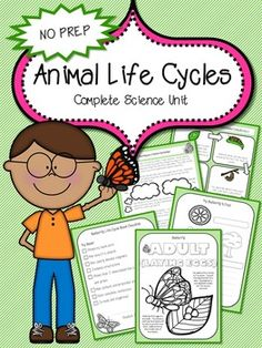 Animal Life Cycles Unit Plan **194 Pages*** Hands on Activities* Inquiry Based Unit* No Prep!Download the preview to see the quality and fun this packet will bring to your classroom!This Science Unit Includes: Foldables, Craftivities, Printable Notebook, 3D Mobile Activity, Endangered Species Poster and Final Project! 8 Super Detailed Animal Life Cycles Lessons each with Teacher Notes and Student Printables Life Cycle Printables for Bat, Salmon, Frog, Chicken, Butterfly and Sea T... Grade 3 Science, Science Lessons, Chemical And Physical Changes, Chemical Change, Teacher Resources, Teaching Ideas, Unit Plan, Teacher Notes, Hands On Activities