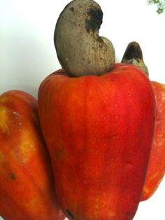 Cashew fruit - Once upon a time, Mozambique was the world's leading exporter of cashews.