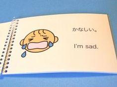Japanese Feelings Book