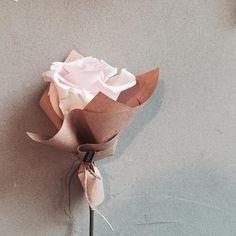 . . 올해의 마지막밤 좋은꿈꾸시길 ✨ . . Lesson Order 👉🏻Katalk ID vaness52 E-mail vanessflower@naver.com 📞070-7522-6813 . #vanessflower #flower #florist #flowershop #handtied #flowerlesson #flowerclass #플라워 #바네스플라워 #플라워카페 #플로리스트 #꽃다발 #부케 #원데이클래스 #플로리스트학원 #플라워레슨 #플라워아카데미 #꽃수업 #꽃주문 #花 #花艺师 #花卉研究者 #花店 #花艺