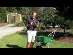 Zoysia Grass Maintenance