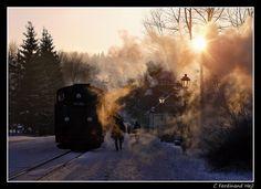 https://flic.kr/p/fVNSxg | SOEG_BR 99 758_Jonstdorf-Zitauer-Schmallspurbahn, Zittau, Lausitz, Sachsen, Deutschland | SOEG_BR 99 758_Jonstdorf-Zitauer-Schmallspurbahn, Zittau, Lausitz, Sachsen, Deutschland