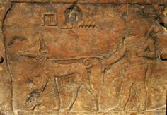 When looking at depictions of dogs in ancient Egyptian art, scholars and general audiences are eager to determine what type of dog is being shown. Beginning in the Predynastic Period (c. 4000 BCE) the most commonly portrayed dog is a type of hunting hound with erect pointed ears and a short curly tail. This dog is often referred to as a Pharaoh Hound, an Ibizan Hound, or a Basenji.