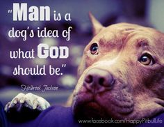 "https://www.facebook.com/HappyPitbullLife ""Man is a dog's idea of what God should be."" - Holbrook Jackson #pitbull #dog #quote #pet #mansbestfriend #family #loyalty #admiration"