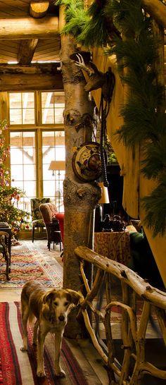 Cabin Christmas ...