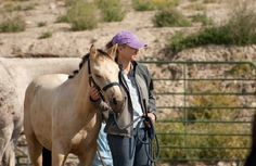 """""""They get from you what you are responsible for giving: guidance, teaching & a safe place to be."""" - Buck Brannaman on working with newly weaned horses"""