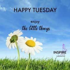 Happy Tuesday Enjoy The Little Things good morning tuesday tuesday quotes good morning quotes happy tuesday tuesday quote… Good Morning Tuesday Wishes, Happy Tuesday Quotes, Tuesday Humor, Sunday Quotes, Good Morning Greetings, Good Morning Good Night, Good Morning Quotes, Morning Memes, Have A Happy Day