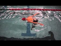 This synchronized swimming drill for a barracuda drill to the bottom takes a great deal of body awareness. The goal is for the swimmer to end vertical. Swimming Drills, Synchronized Swimming, Swimming Tips, Cycling Tips, Cycling Workout, Road Cycling, Fixed Bike, Fixed Gear, Swimming Workouts For Beginners