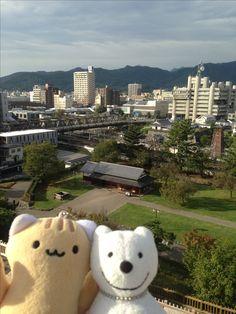 クマ散歩:舞鶴城公園に品行方正なクマ再び The Bear took a walk around Maizuru Castle Park again!♪☆(^O^)/  #舞鶴城#品行方正#クマ