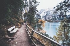 take a break from everything and go somewhere like this ;)  #GearDoctors  #travel  #Forest  #backpacking  #outdoor  #hike  #mountains  #photography  #hikingadventures  #motivation  @geardoctors