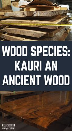Thanks to my daughter, Meg, I stumbled across what may be the oldest wood in the world; kauri. It comes from New Zealand, where the trees fell into a peat bog as much as 50,000 years ago. Here's what I've learned about this amazing material.