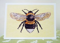 Bumble Bee Card Bee Card Bee Print Bumble Bee Print on frameable card - Garden Bumble Bee a favourite and commonly seen bee.Frame Yourself by Canvasbutterfly on Etsy