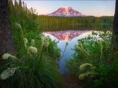 mount adams - Google Search