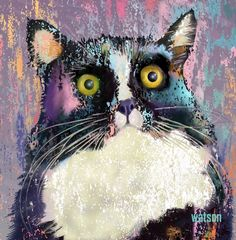 ARTFINDER: Big Eyed Tuxedo Cat by Marlene Watson - This lovely Tuxedo Cat has the biggest eyes! I love cats and their personalities are easy to connect with even in print.  This print is digitally created f...