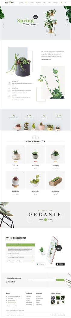 Web design - eCommerce website design. Nice clean look with product section, signup box and full width header slider.
