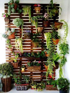 Τοποθετήστε χαμηλότερα φυτά που έχουν αναρριχώμενη ανάπτυξη όπως η βουκαμβίλια και ο κισσός.