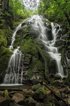 Rincon de la Vieja area, northern zone of Costa Rica. Thanks to Costa Rica Travel Pass for sharing this pic