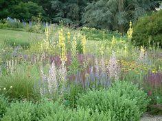 Hermansshof, the garden of Cassian Schmidt in Weinheim (Germany)