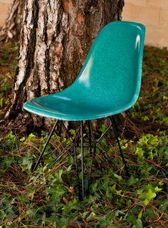 Modernica: Peacock Fiberglass Shell Chairs - Need, want, need, want, need, want
