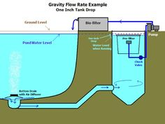 Need suggestions on what brand vortex settlement tank. Swimming Pool Pond, Natural Swimming Pools, Backyard Water Feature, Ponds Backyard, Pond Filter System, Piscina Rectangular, Piscine Diy, Koi Pond Design, Pond Construction