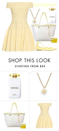 """springtime"" by j-n-a ❤ liked on Polyvore featuring Versace, Kate Spade, Nine West, Alexander McQueen and Jimmy Choo"