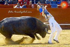 torodigital: El final de Fallas y el mercado de los festejos p...