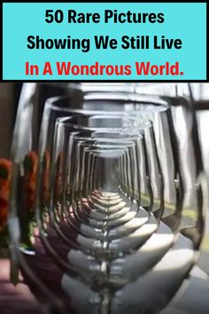 If you're looking for something to lift up your spirit during these trying times, here are 50 photos that will make you believe that the world is still full of wonders. Drawing Quotes, Viral Trend, Rare Pictures, Strike A Pose, Picture Show, How To Make, Fashion, Moda, Fashion Styles