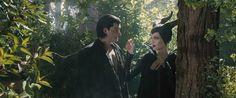Diaval (Sam Riley) and Maleficent (Angelina Jolie)