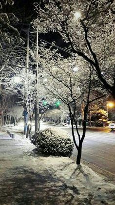 Snow. Korea