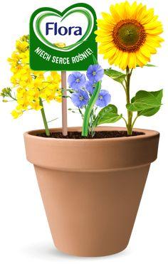 Flora Flora, Planter Pots, Plants