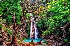 Τρεις ώρες απ' την Αθήνα οδικώς: Το μέρος με τις χρυσαφένιες παραλίες, το ποτάμι και τους καταρράκτες που σαρώνει στο Instagram | Έθνος Waterfall, Plants, Outdoor, Instagram, Outdoors, Waterfalls, Plant, Outdoor Games, The Great Outdoors