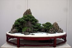 suiseki bonsai
