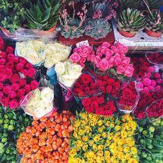 I love my new neighborhood, so many flowers  #vesterbro #copenhagen