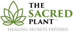 Join me as I watch 17 Doctors, 12 Experts & 18 Survivors reveal how THIS miracle plant is having a profound affect on health.
