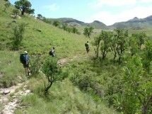 Guided Hiking in the Eastern Cape Hiking Spots, Hiking Trails, Kwazulu Natal, Adventure Activities, Day Hike, Stunningly Beautiful, The Great Outdoors, Hospitality, Wilderness