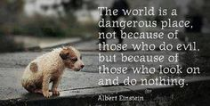 The world is a dangerous place, not because of those who do evil,...   Albert Einstein Picture Quotes   Quoteswave