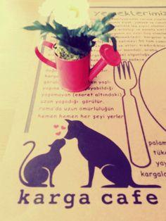 Enjoying :) ♡