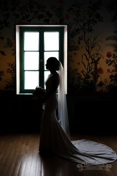 A Milwaukee's bride's elegant silhouette at the Villa Terrace shows off her gorgeous Theia gown's train, photo by Front Room Studios Milwaukee County, Bride Photography, Historical Society, Photo Sessions, Terrace, Studios, Wedding Photos, Villa, Train