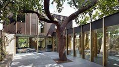 Bij de bouw van dit huis bleef de honderd jaar oude boom gewoon staan