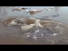 I could not quit watching this, it is crazy! And I would not have gotten that video, I would be running the other way ;)  Monstrous whirlpool in Latvia swallows everything in its path - FunMelaMasti.com - YouTube