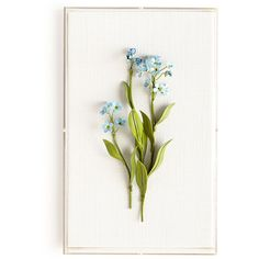 Tommy Mitchell Original Painted Forget-Me-Not Study ($895) ❤ liked on Polyvore featuring home, home decor, wall art, flowers, blue, blue home decor, framed wall art, flower wall art, blossom wall art and framed floral wall art