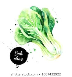 Painted sketch isolated on white background. Vegetable Illustration, Fruit Illustration, Illustration Sketches, Food Illustrations, Botanical Illustration, Watercolor Illustration, Colorful Artwork, Colorful Drawings, Easy Drawings