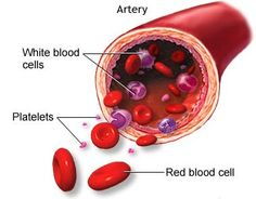 Platelet rich plasma injection therapy platelet rich plasma platelet rich plasma ccuart Image collections